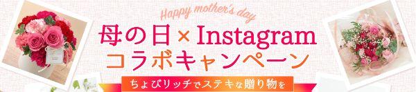 ちょびリッチの母の日×Instagramコラボキャンペーントップページ